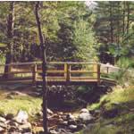 Rothiemurchus Camp and Caravan Park